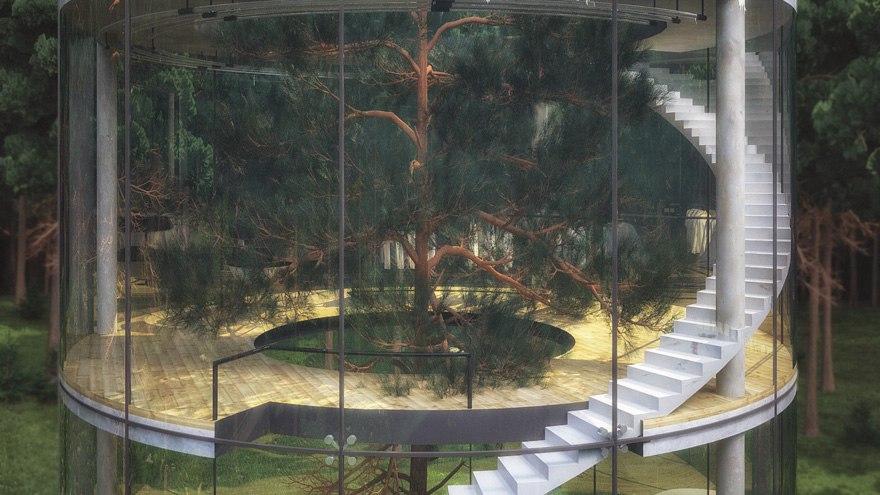 Чудеса архитектуры: Дом с деревом внутри