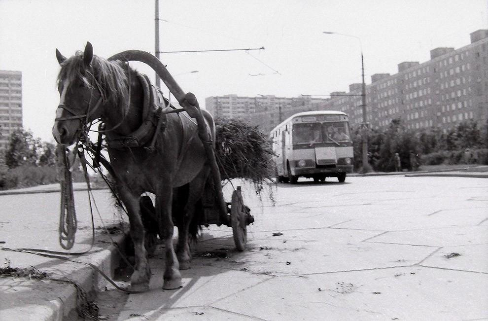 36. Москва, Юго-Запад, 1979 г.