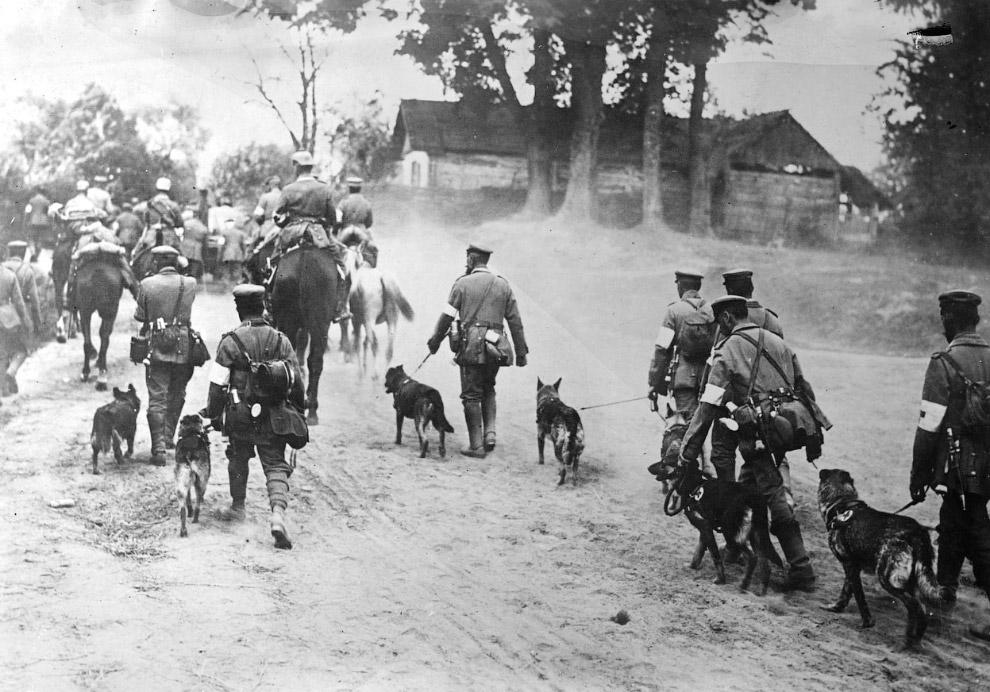 Солдаты тащат пушку с помощью лошадей, 1918 год. (Фото National Archive | Official German Photo