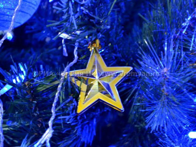 ВНижнем Новгороде вчесть приезда Деда Мороза взорвут 800 хлопушек