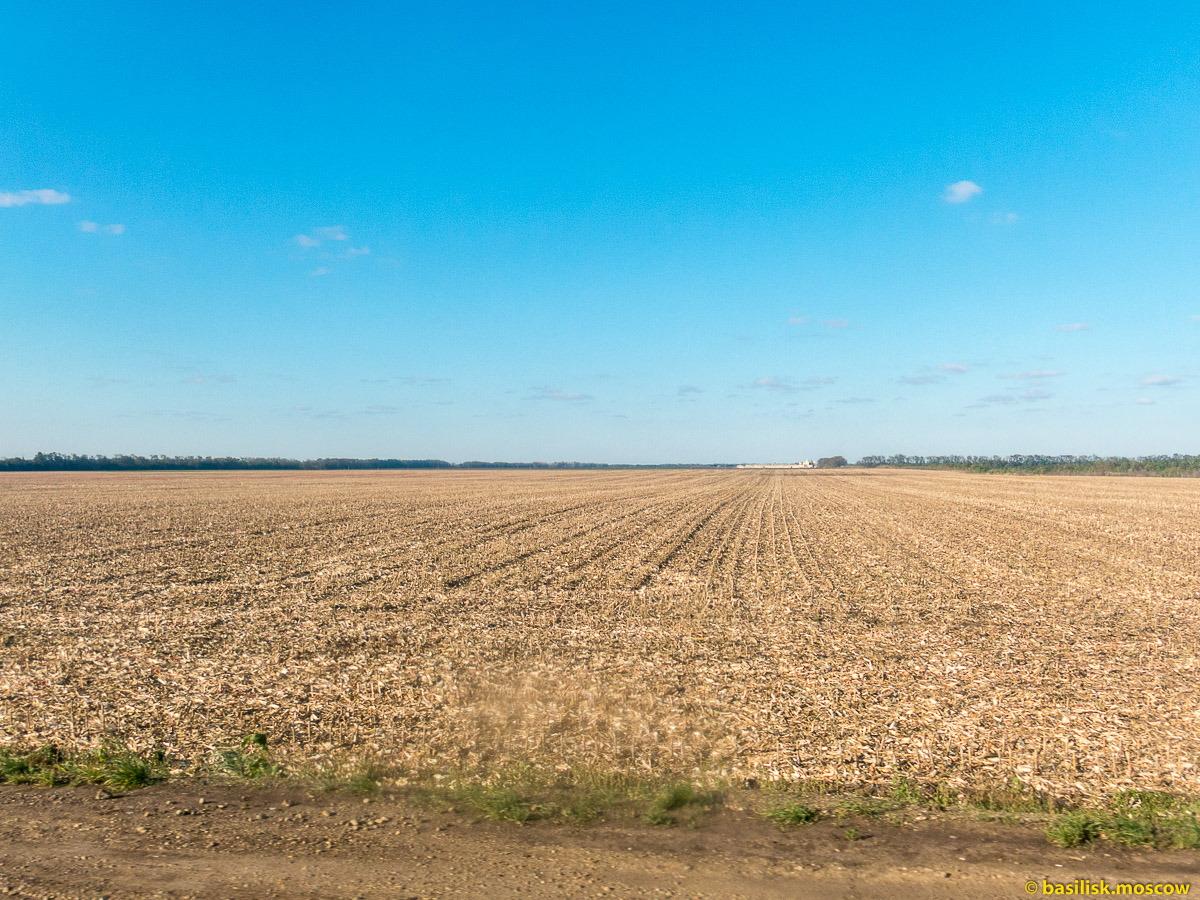 Кубанские поля и дороги. Октябрь 2016