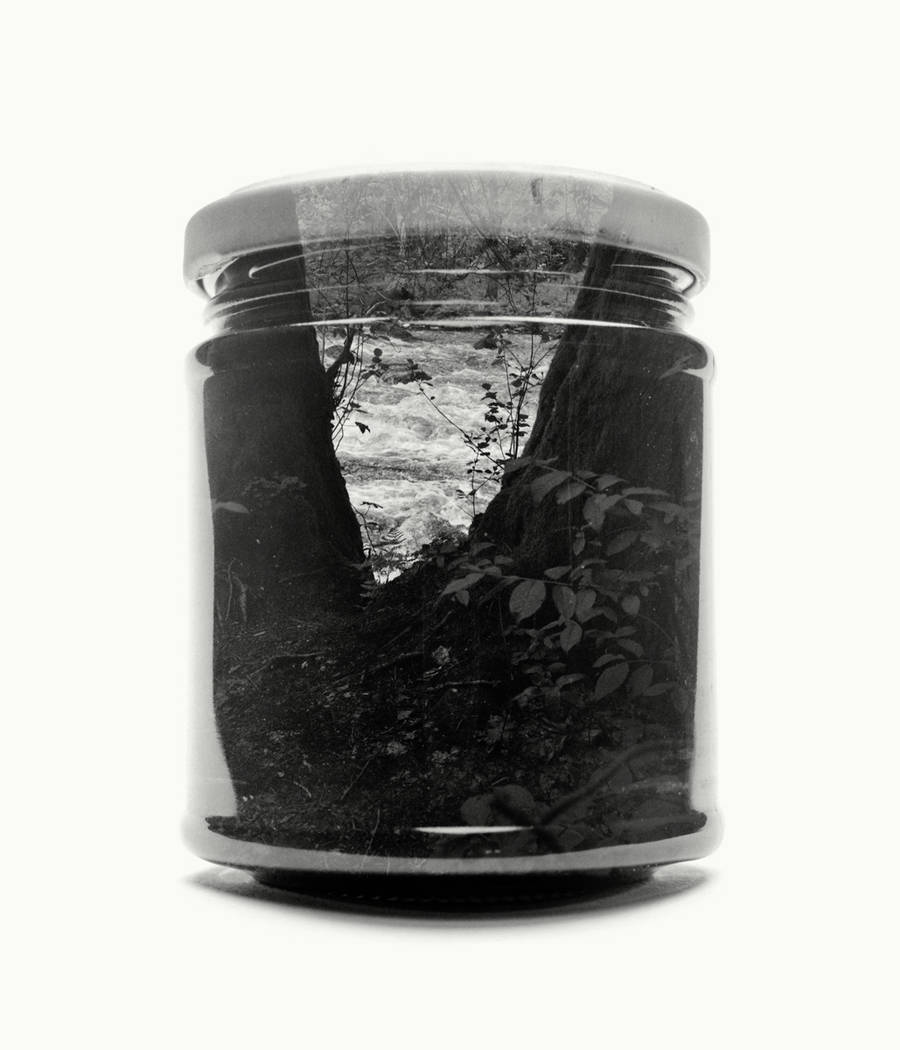 Poetic Black and White Landscapes in Glass Pots