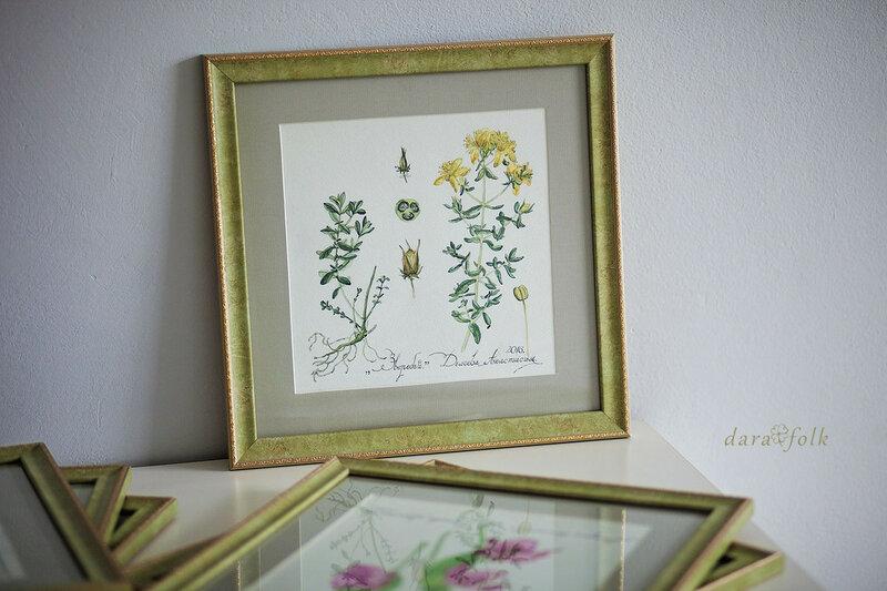 Ботаническая иллюстрация http://darafolk.ru/ дом