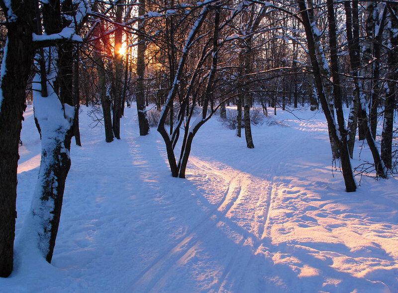 Мороз и солнце!..День чудесный! ..