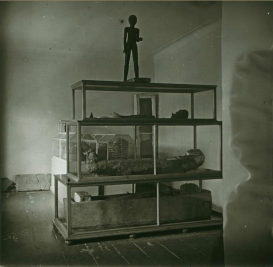 07. Вид зала египетских мумий