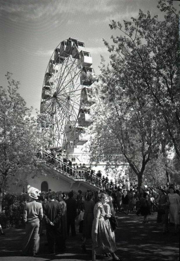 1950-е. Колесо обозрения в парке