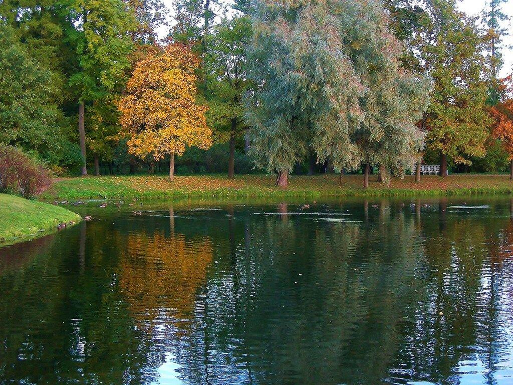 Вечер у озера...