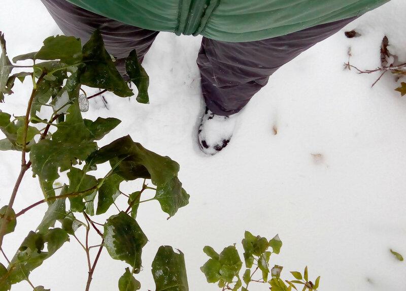 снег1.jpg