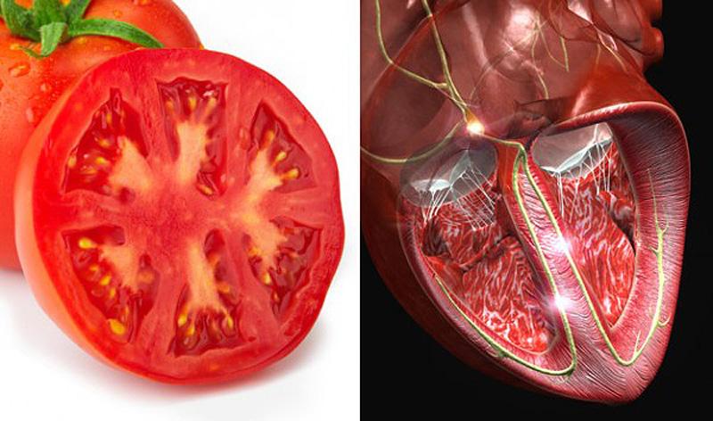 7. Помидоры — сердце Разрежьте помидор пополам, и увидите многочисленные камеры, которые напоминают
