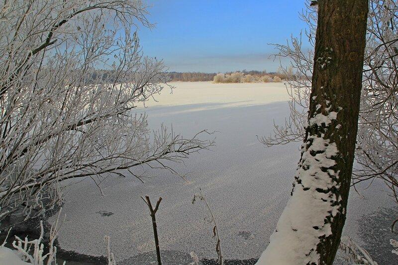 Зимний пейзаж озера Жуково (Кирово-Чепецк): покрытая льдом гладь озера, и ветки кустов в инее
