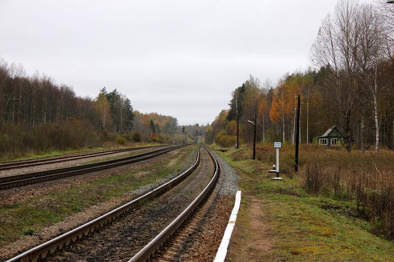 Платформа на станции Гарнея, вид на Посинь. Ряд выходных нечётных светофоров
