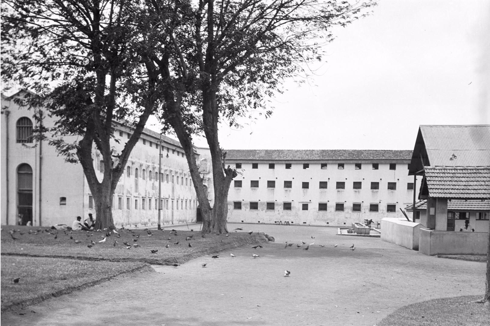 241. Двор тюрьмы в Коломбо