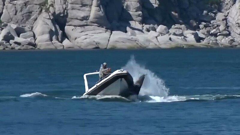 кит лодка.jpg