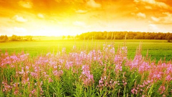 День летнего солнцестояния! Восход солнца!