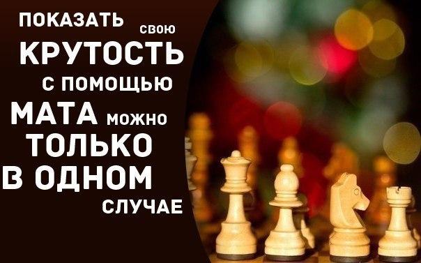С Международным днем шахмат. Покажи свою крутость открытки фото рисунки картинки поздравления