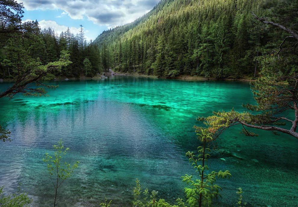 Интересно, что дно озера устилают вовсе не водоросли, а обычная трава, кустарники и деревья, ко