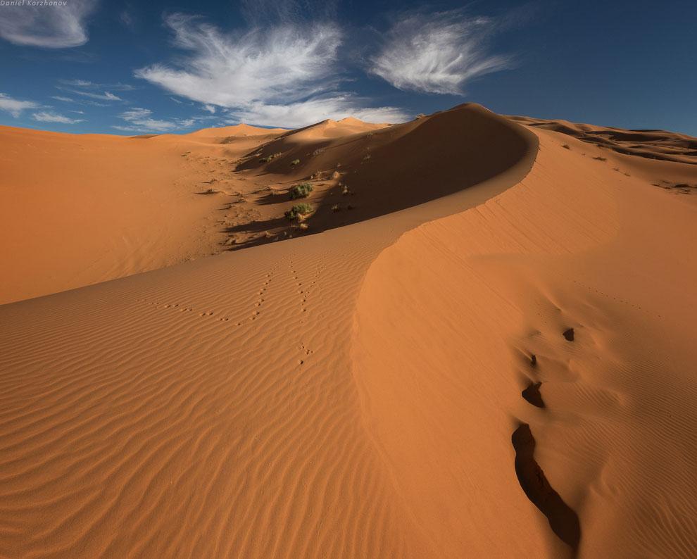 К вечеру мы покорили ещё одну вершину пустыни, одолжив у Мохаммеда джелабу— вот так
