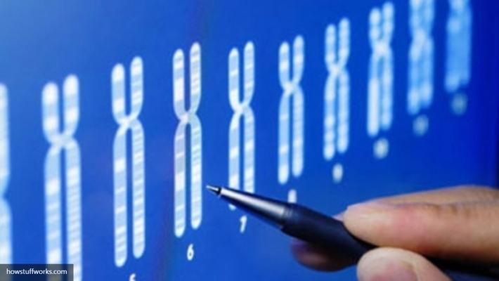Ученые узнали пользу мутации генов