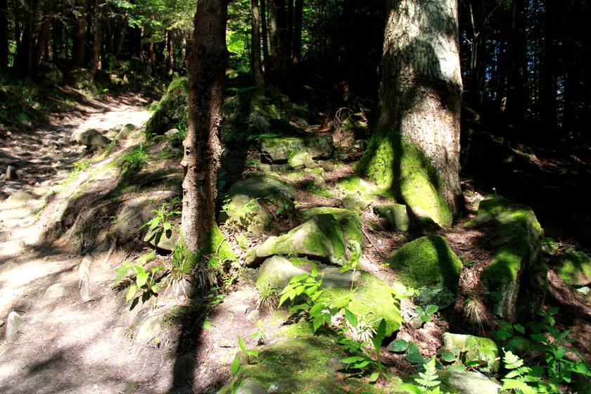 Каменка (2).JPG