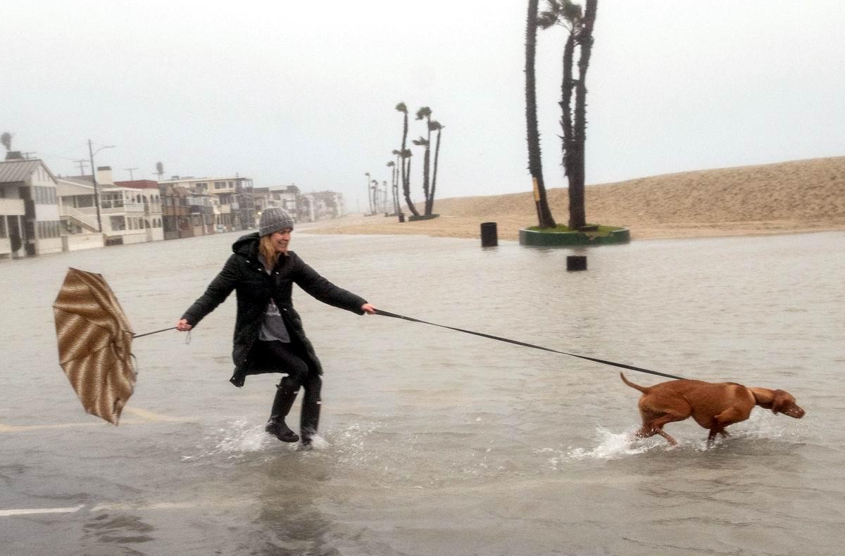 Мы готовы гулять по колено в воде: Дама с собачкой в условиях непогоды