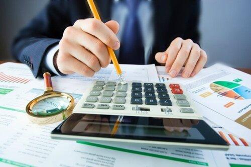 Названы основные источники госбюджета Молдовы на 2017-й год
