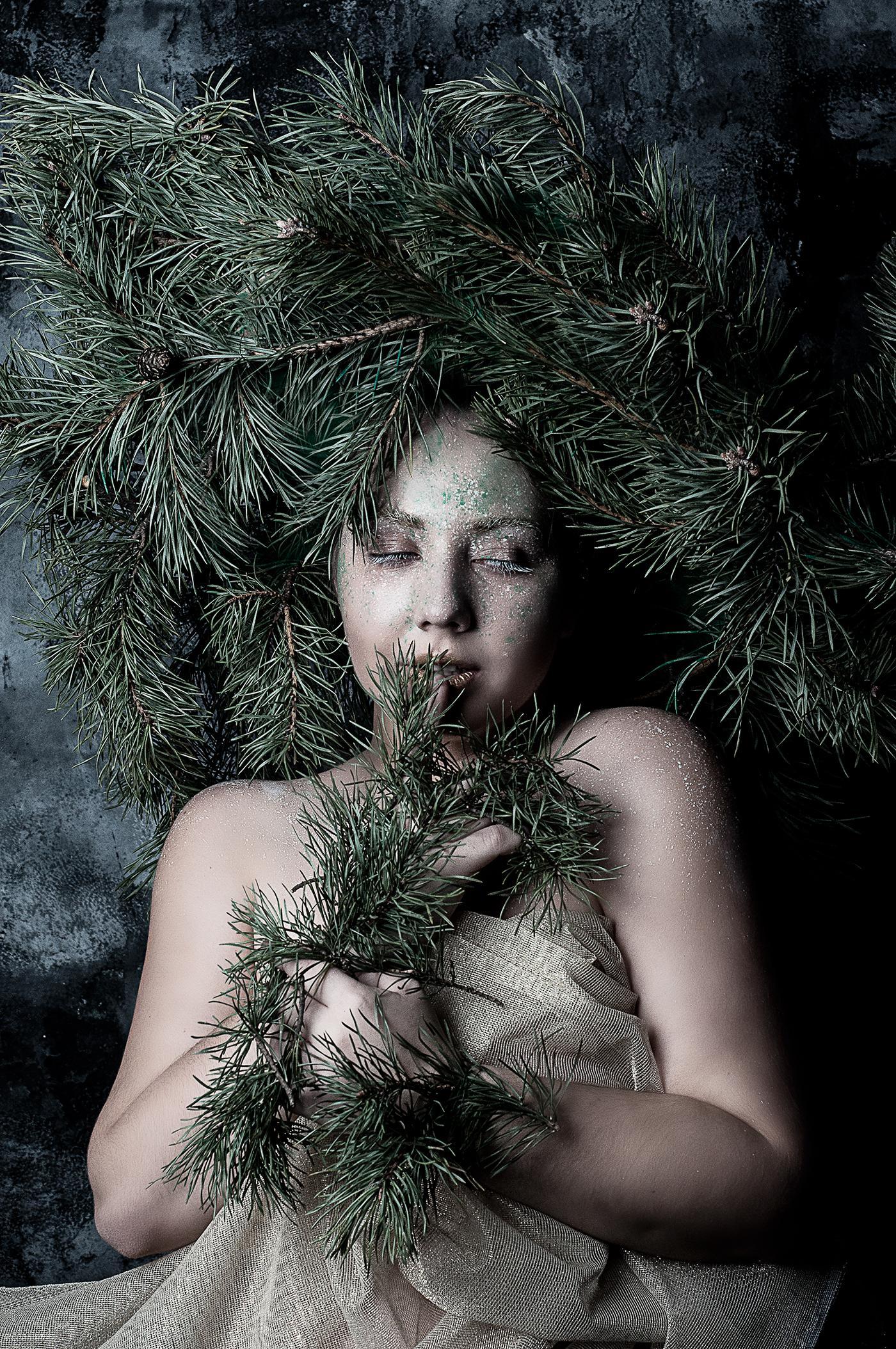 PINE / Светлана Соколова
