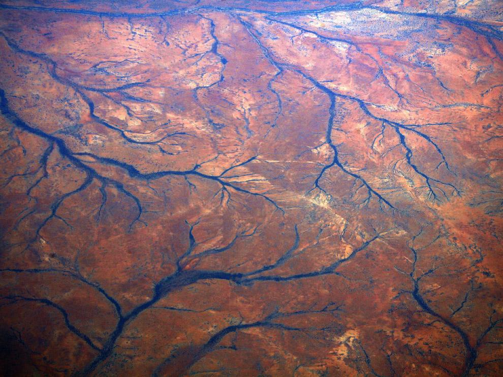 24. Песчаные дюны и растительность в регионе Пилбара, Западная Австралия. (Фото David Gray):