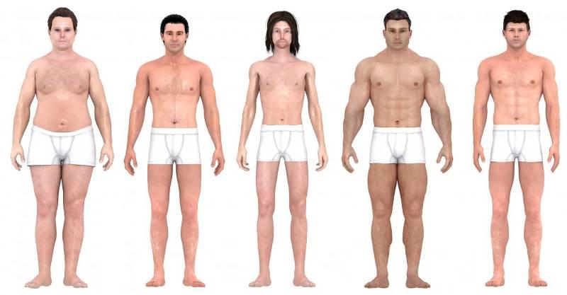 В 2012 году исследователи из Института неврологии использовали программное обеспечение 3D-визуализац