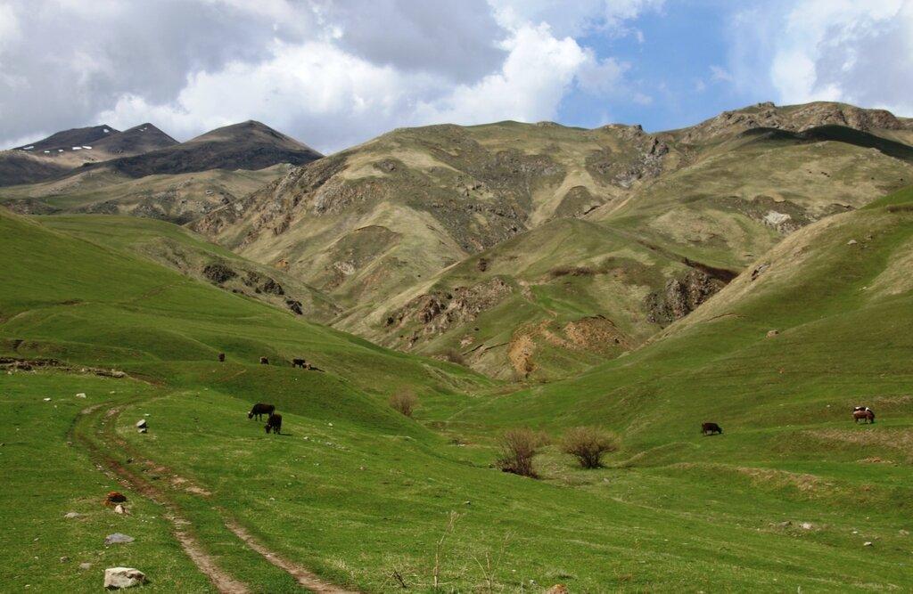 Ванадзор, Армения
