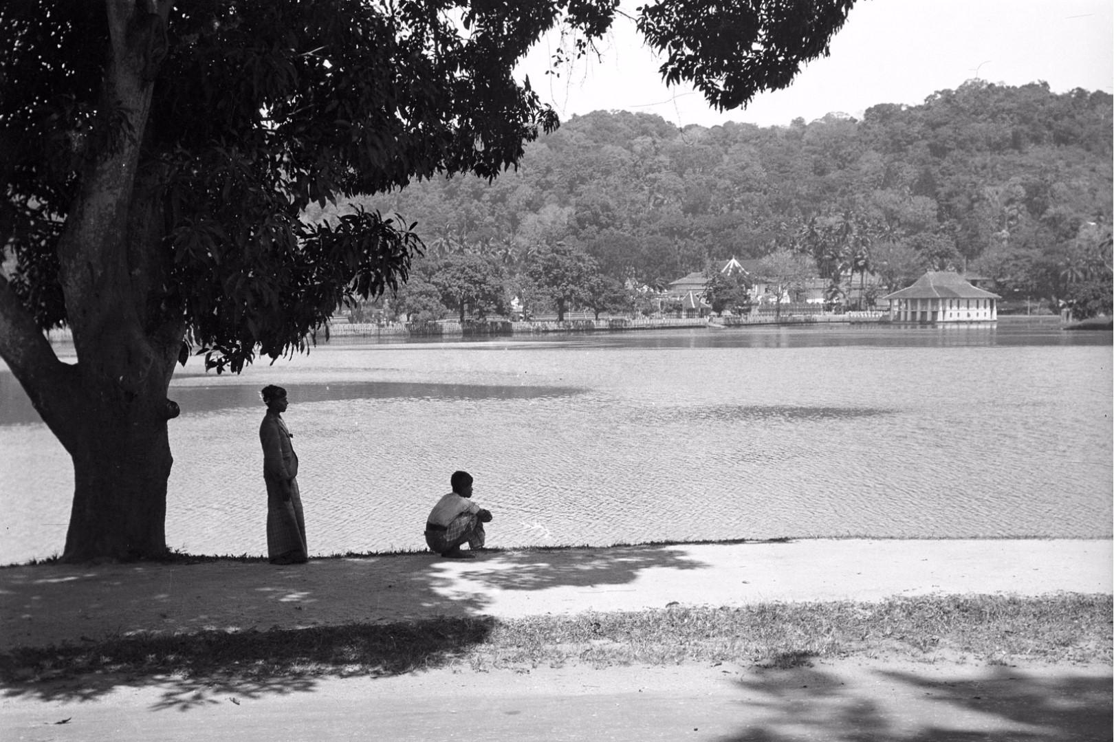 220. Вид на озеро, купальню и Храм Зуба Будды (Шри Далада Малигава) в Канди в Канди