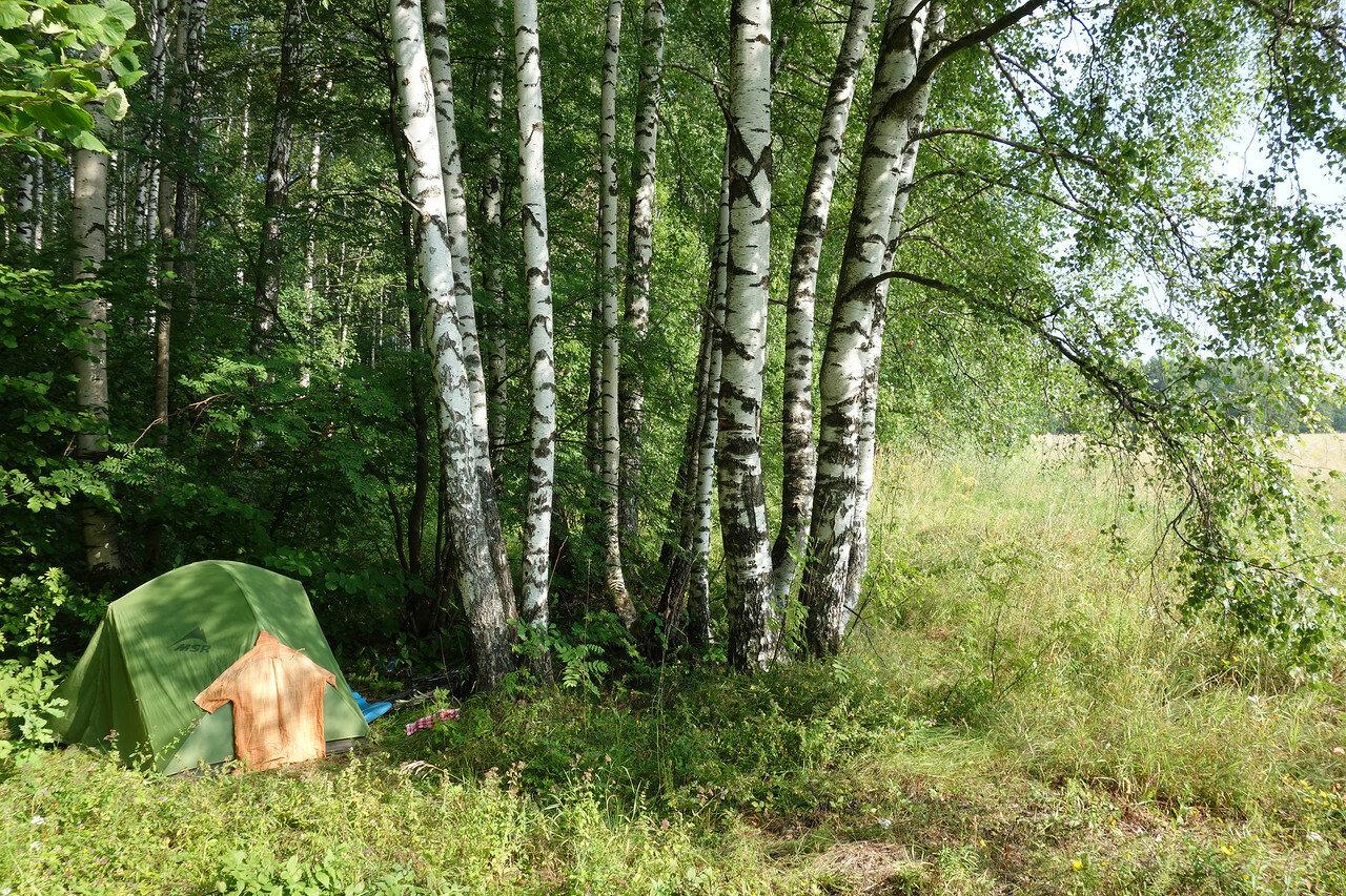 привал-ночевка №17, край леса