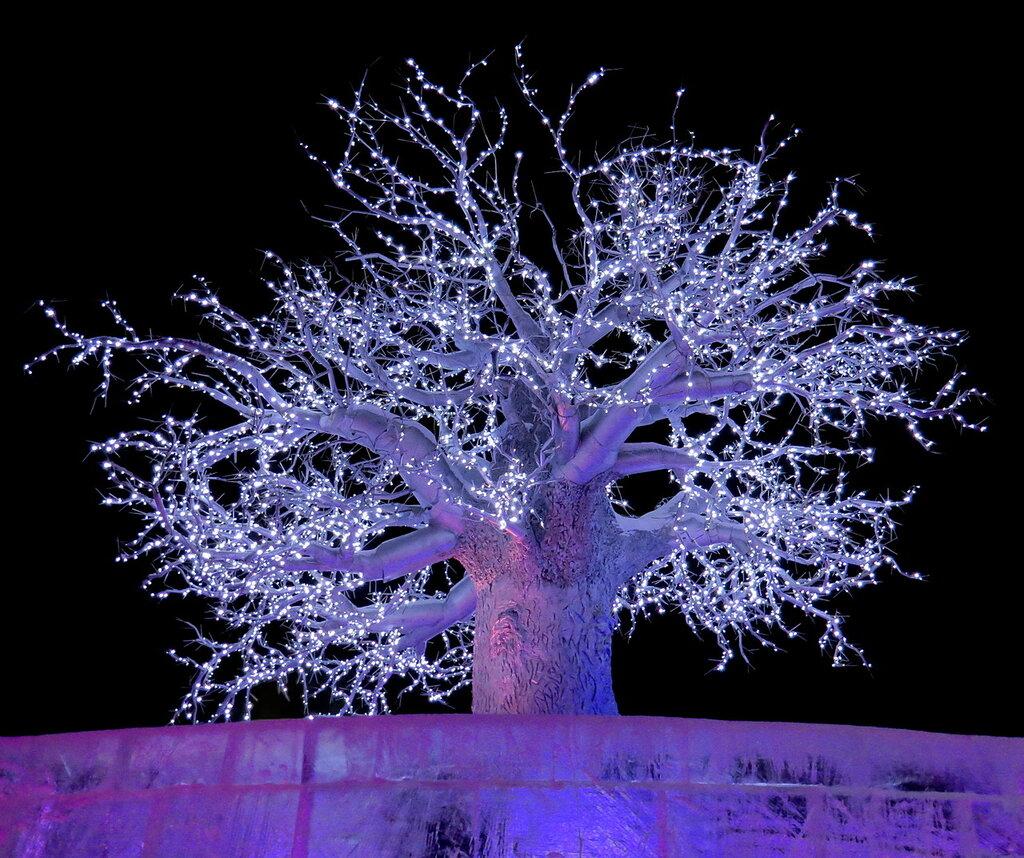 Белое Древо Беловодья