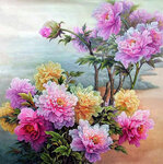 Цветы -1