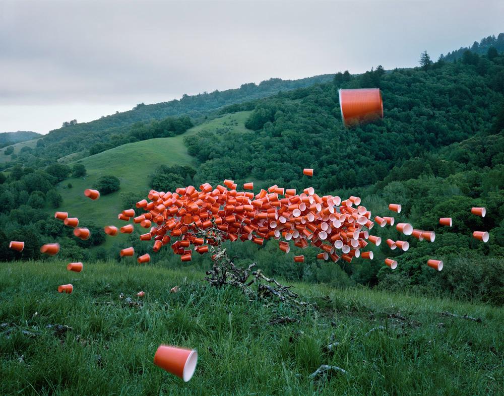Стая пластиковых стаканов в инсталляции Thomas Jackson (9 фото)
