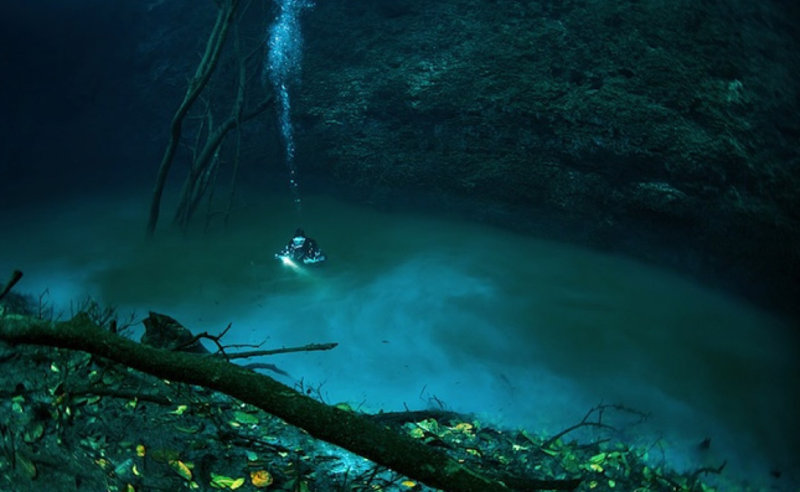 Древние майя почитали сеноты местом, откуда живой может перейти в царство мертвых. Их задействов