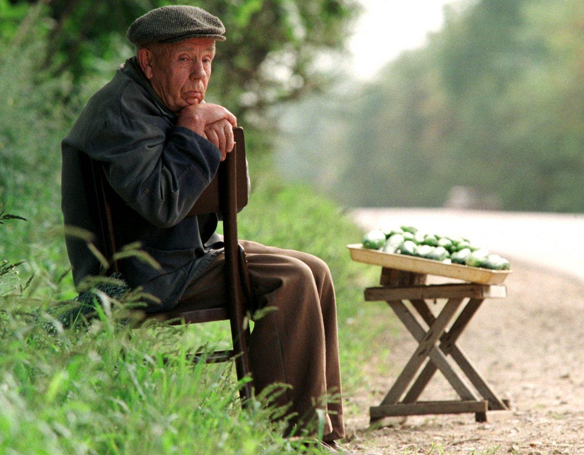 Пенсионер продает огурцы на дороге, 6 августа 1998 года.