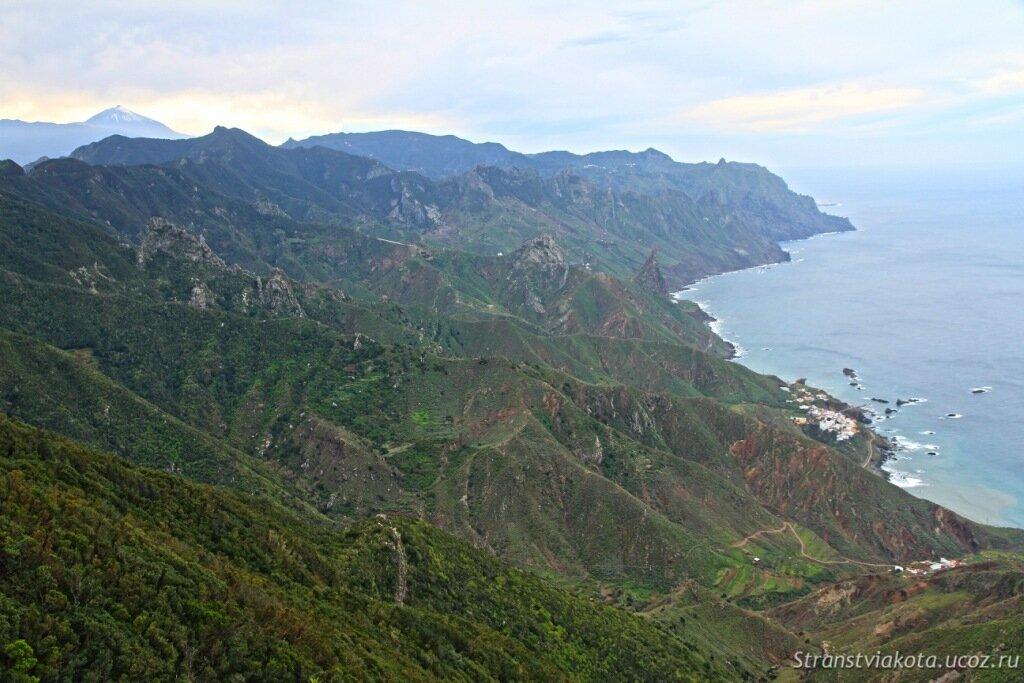 Тенерифе, реликтовые леса Анаги