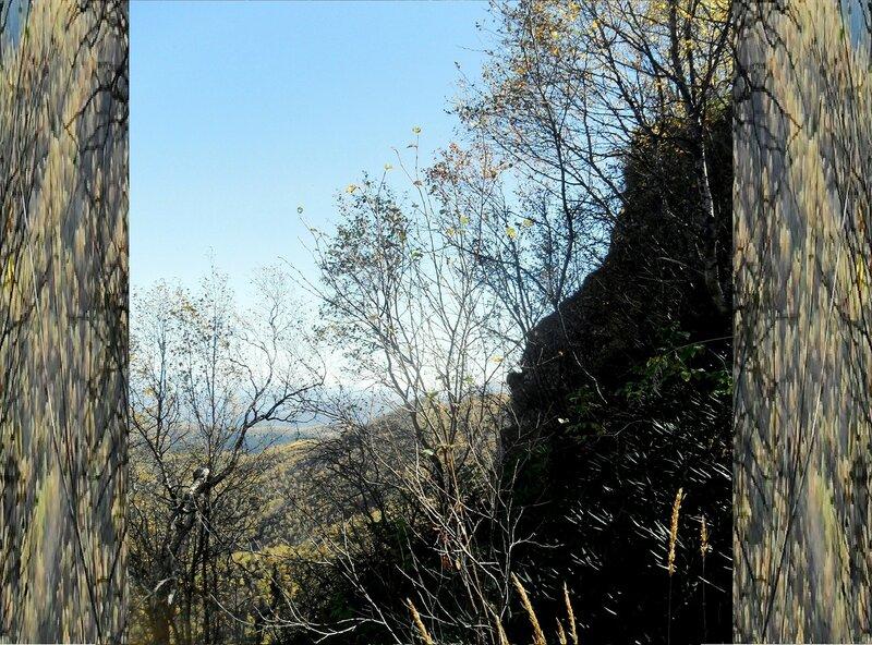 Природы уголок, в окне фотографическом ... SAM_3349.JPG