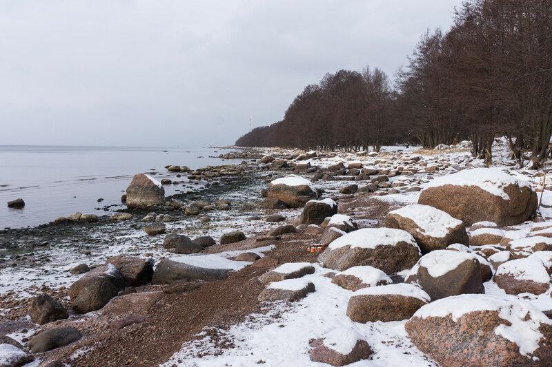 берег финского залива на полуострове киперорт
