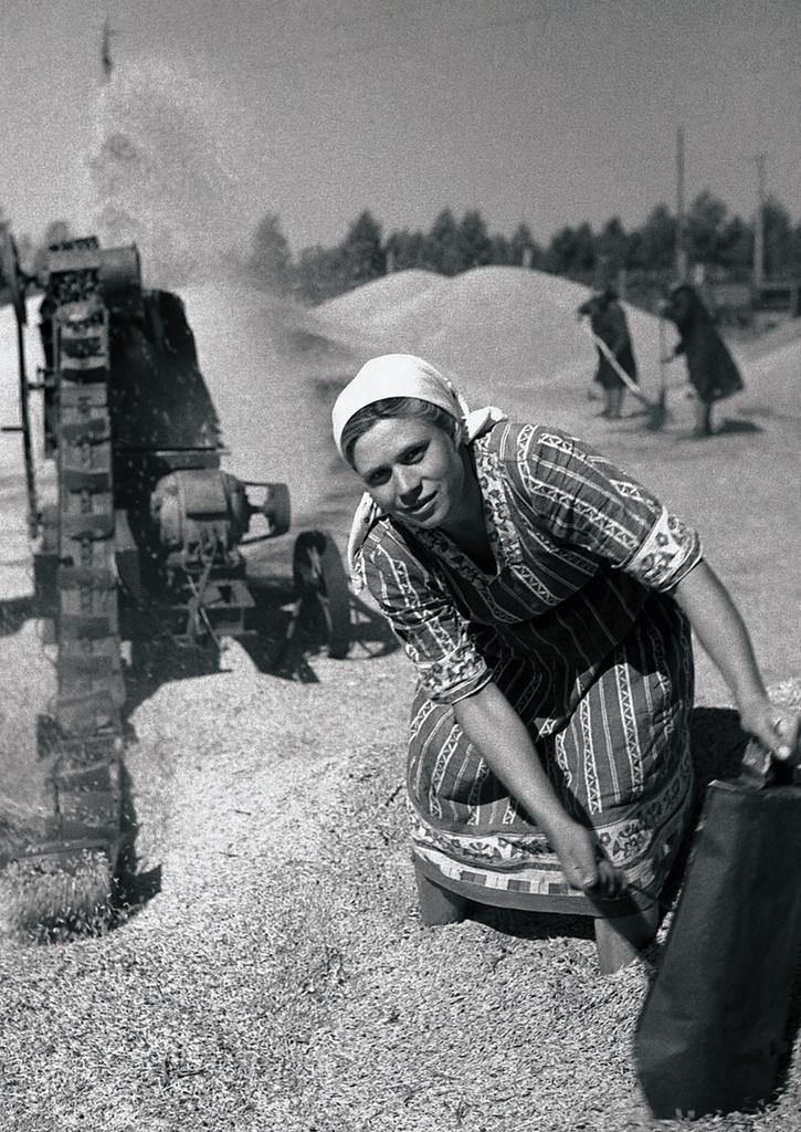 Очистка зерна на току. В. Ф. Старикова
