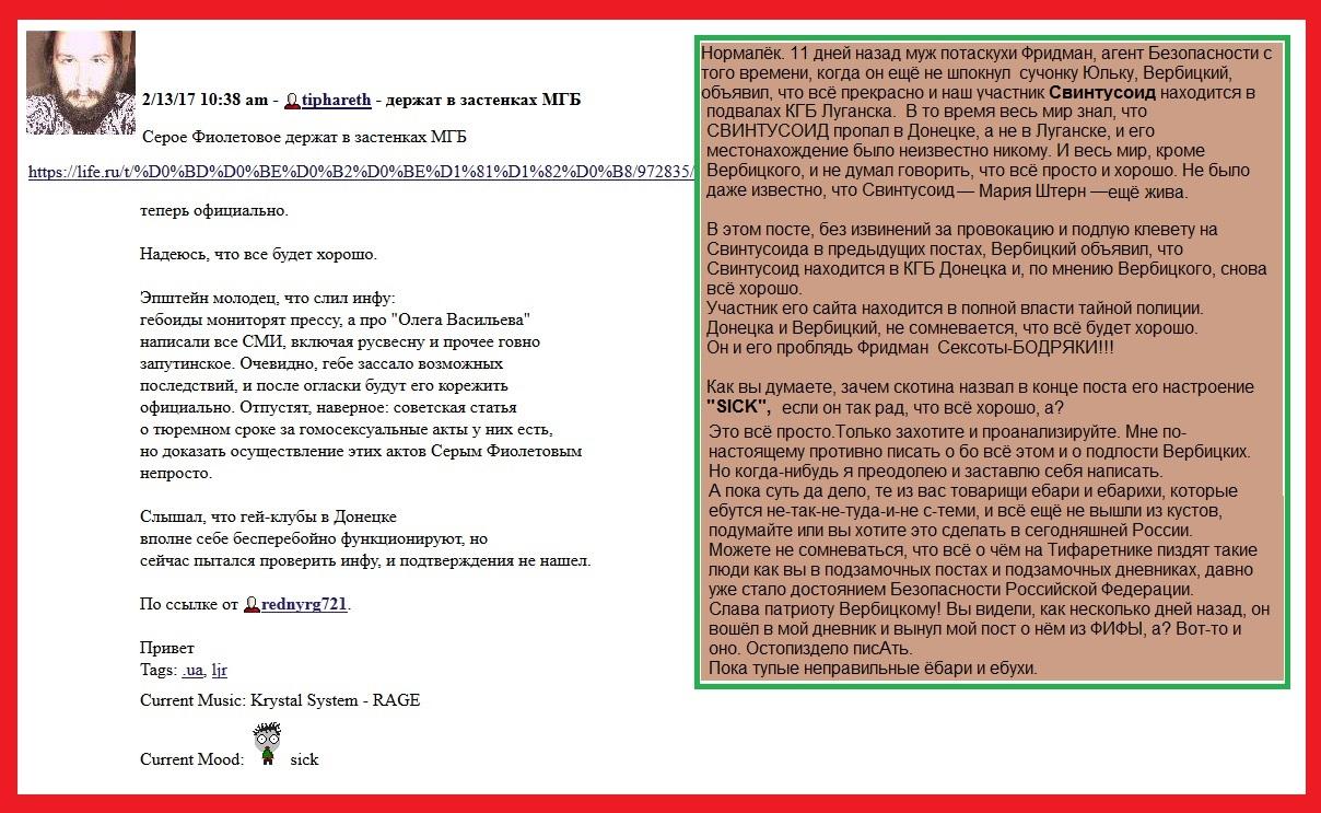 Вербицкий,Свинтусоид, Мария Штерн, сексоты, клевета, ЛЖР, геи