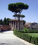 Храм Геркулеса на Бычьем форуме