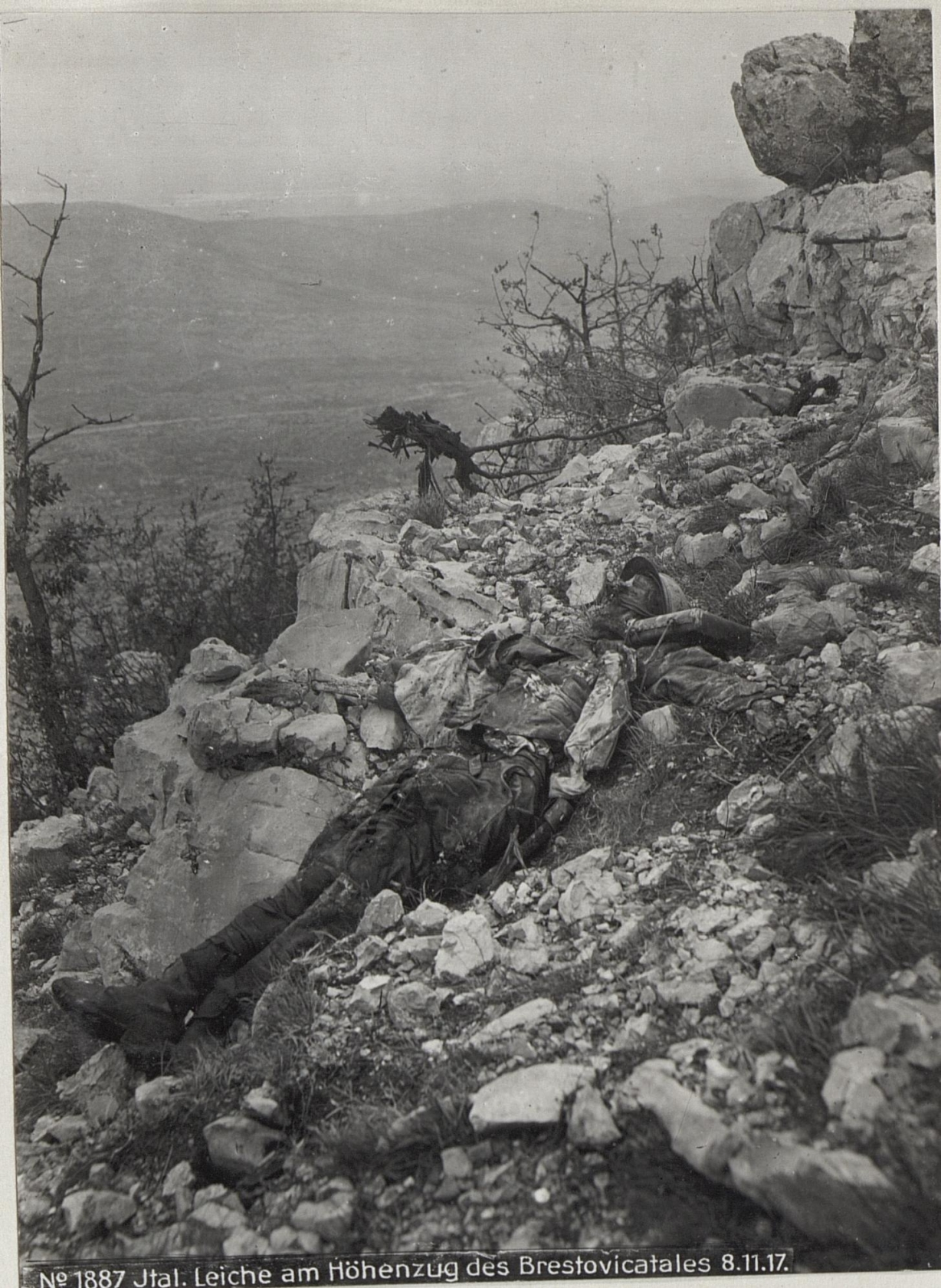 Italienische Leiche am Hцhenzug des Brestovicatales