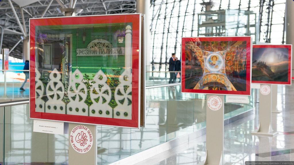 Передвижная выставка путешествует по регионам России