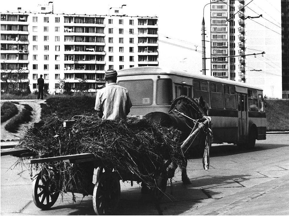31. Москва, Юго-Запад, 1978 г.