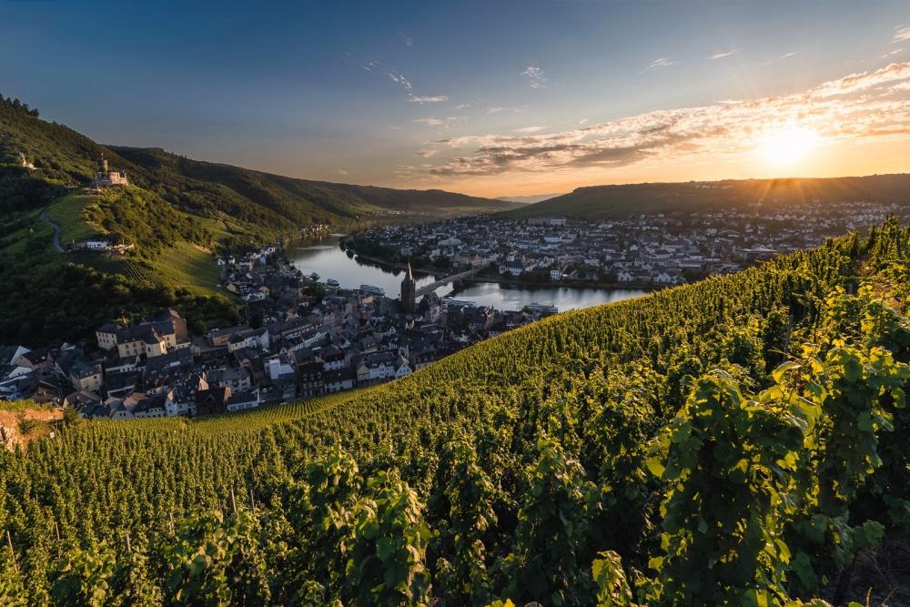 © Raico Bernardino Rosenberg  Река Мозель протекает повинодельческим регионам Германии, Франц