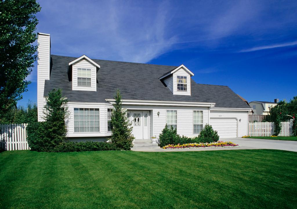 В США в таких домах живет 65% населения.