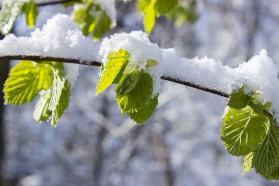 Когда потеплеет вУкраине— дата