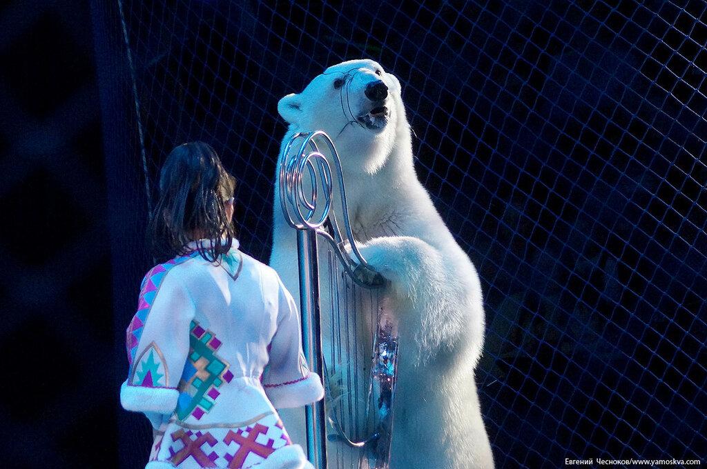 Зима. Снежная королева. 17.12.16.72..jpg