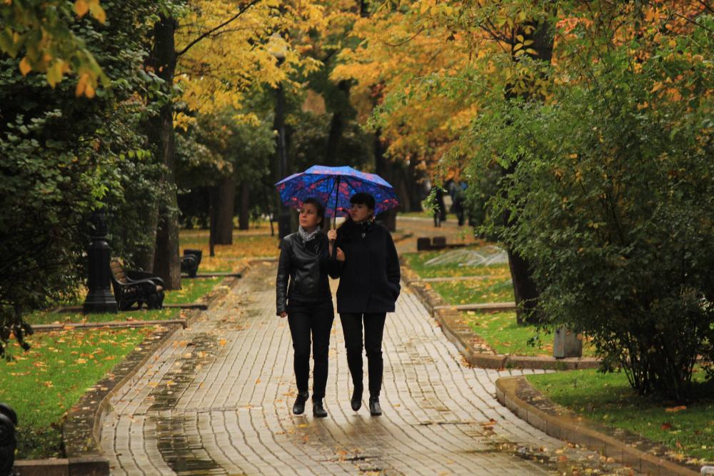приятная обстановка, картинки прогулки по осеннему городу когда подчинённые